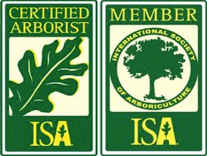 isa logos 300x227 300x227 - Tree & Shrub Removal